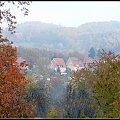 kolory jesieni w oddali we mgle #drzewa #jesień #kolory