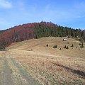 Polana Przechyba #góry #beskidy #gorce #bieniowe #gorc #przysłop