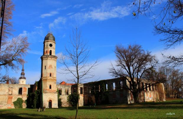 ruiny zamku książąt piastowskich #ruiny #StrzelceOpolskie #zamek