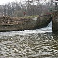 Eletrownia wodna na rzece Wieprz w Michalowie, rzeka poniżej jazu #Michalów #ElektrowniaWodna #Wieprz