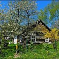 wiosna jest zielono-żółta #wiosna #architektura #wies