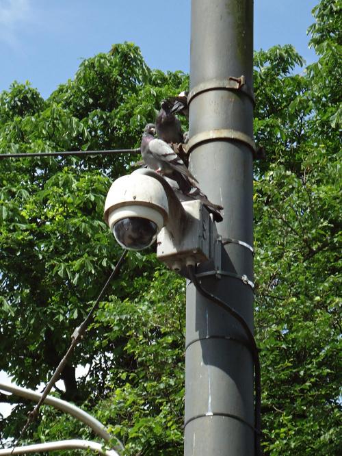 Monitoring uliczny.