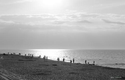 pocztówka z Sarbinowa ... plaża mono ... a dzisiaj pada ? leje się z nieba ... :) #wakacje #urlop #Sarbinowo