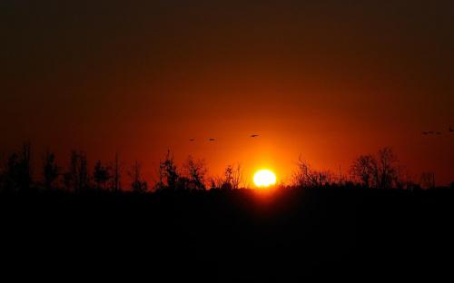 zachód słońca - bagno nietlickie